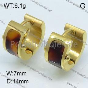 SS Earrings  3E30019bhia-317