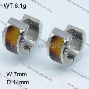 SS Earrings  3E30020vhha-317