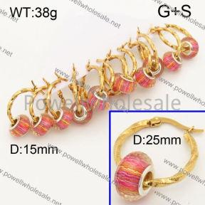 SS Earrings  3E30267bika-212