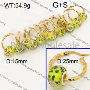 SS Earrings  3E30271bika-212