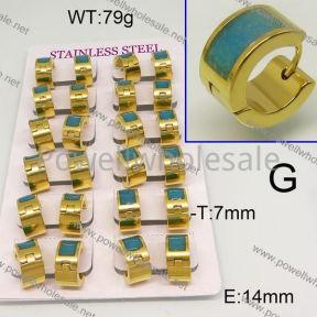 SS Earrings  6E30475aima-689