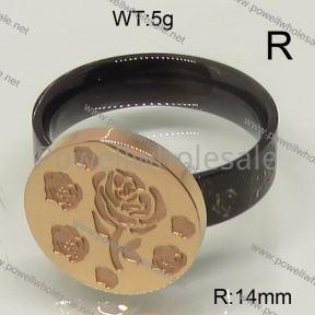 SS Ring  6-9#  6R20005bhva-488